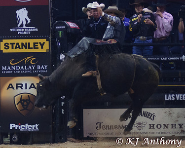 Eduardo Aparecido on Flesh & Blood.  It was the first night and Round One of PBR's Last Cowboy Standing at the Mandalay Bay Events Center on May 10, 2013, in Las Vegas Nevada.