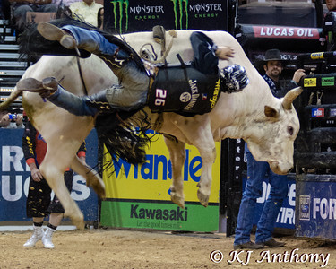 Aaron Roy and Great White.  It was the second night and Round Four of PBR's Last Cowboy Standing at the Mandalay Bay Events Center on May 11, 2013, in Las Vegas Nevada.