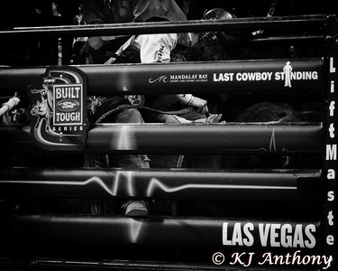 It was the second night and Round Two of PBR's Last Cowboy Standing at the Mandalay Bay Events Center on May 11, 2013, in Las Vegas Nevada.