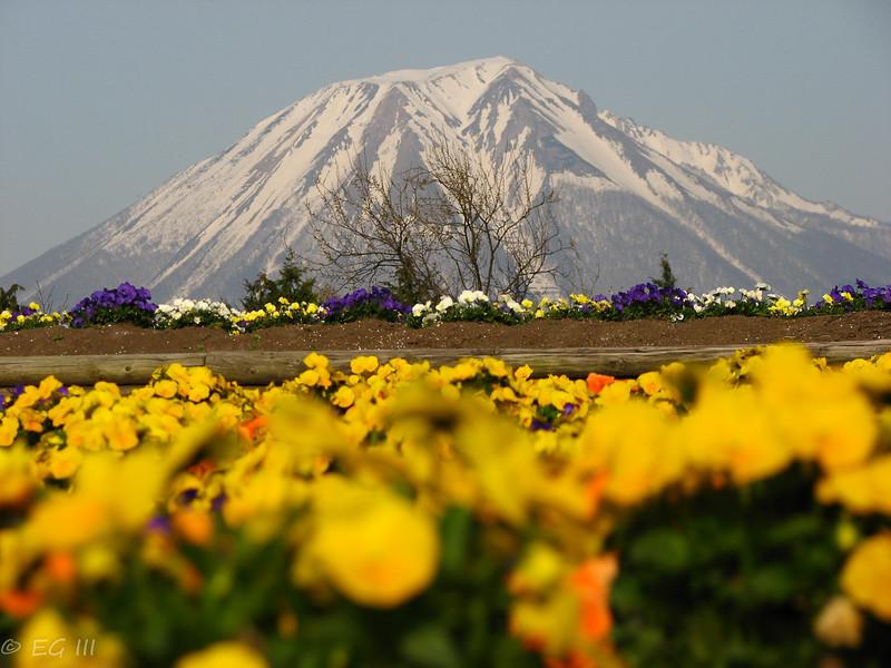 Mount Daisen in Japan