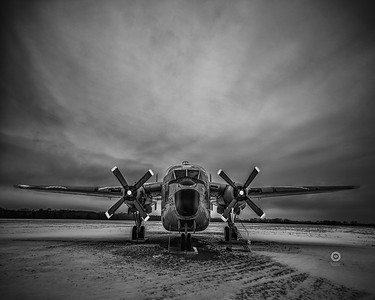 Wings at rest - Second place - Monochrome category - Feb. 2018