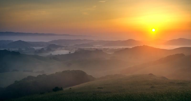 Sonoma Sunrise