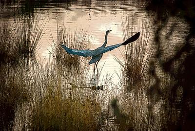 Blue Heron Span