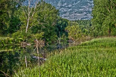 Boundary Creek - Idaho/Canada Border