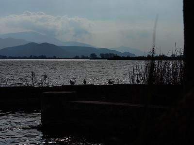 Guardando il lago