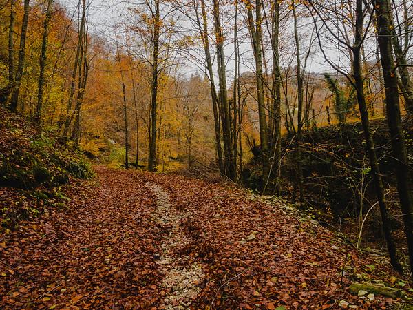 Percorrendo il sentiero