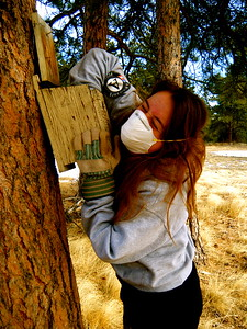 A Corps Member with Fire 2 maintains birdhouses at Calwood Summer Camp in Jamestown CO during round 4 of class 18.AmeriCorps NCCC. Corporation for National and Community Service Photo.