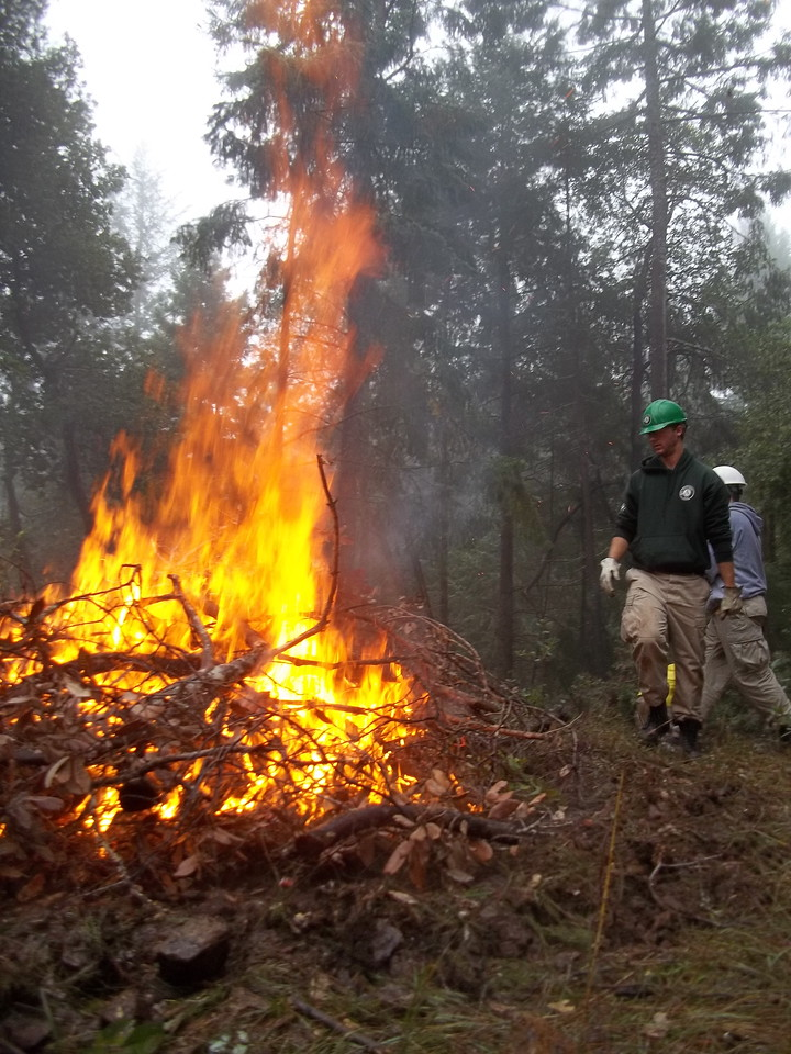 Team leader, Ryan Kocak, maintains control over the burn pile, while corps members collect brush to add to the fire and clear the land for a planting of new redwood trees. AmeriCorps NCCC. Corporation for National and Community Service Photo.