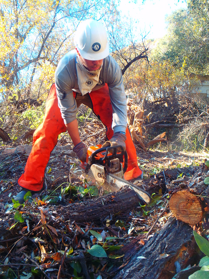 An AmeriCorps member uses a chainsaw to clear a path during a project.