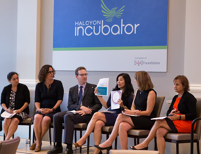 Tracy Palandjian, Co-Chair US NAB, Social Finance US speaks on a panel at the Pay for Success Grantee Announcement at Halcyon House in Washington, D.C.  Corporation for National and Community Service Photo