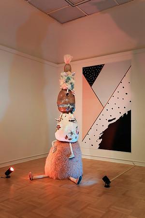 Erin H. Meyer, Master of Fine Arts 2018