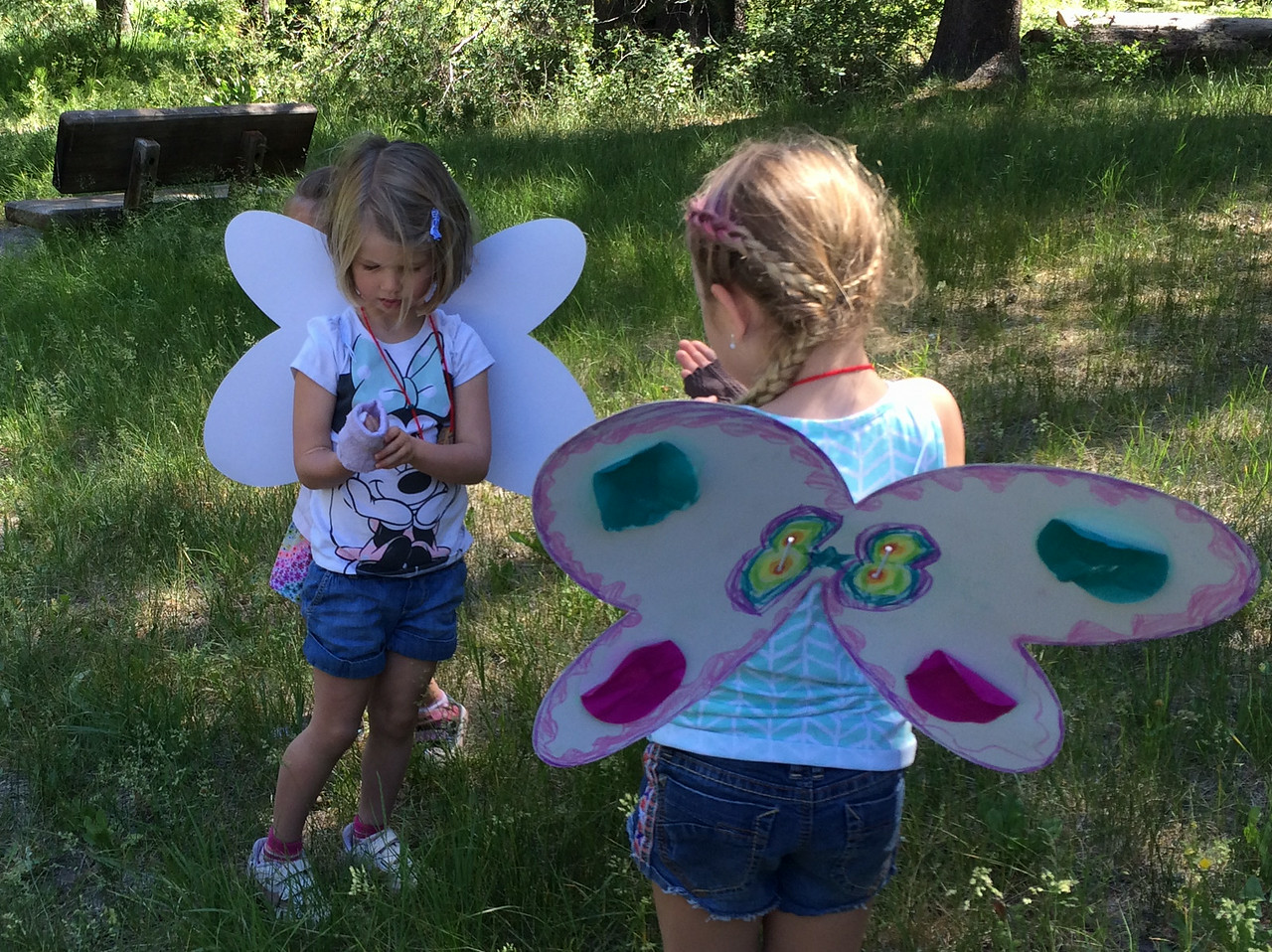 Farm Camp II: Butterfiles 2014