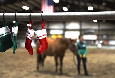 PARK CITY, UT - December 10 ,2012:  National Ability Center EFL Equestrian Program