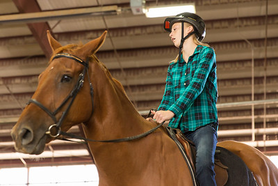 PARK CITY, UT - August 16, 2014:  National Ability Center Horse Show (Photo by Don Cook)