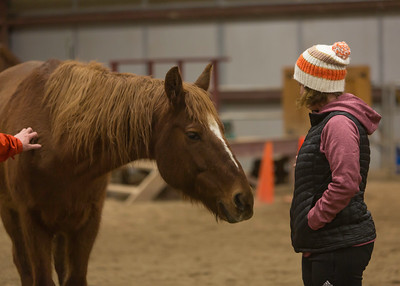 PARK CITY, UT - January 9, 2018:  National Ability Center Equestrian Program Equine-Assisted Learning (Photo by Don Cook)