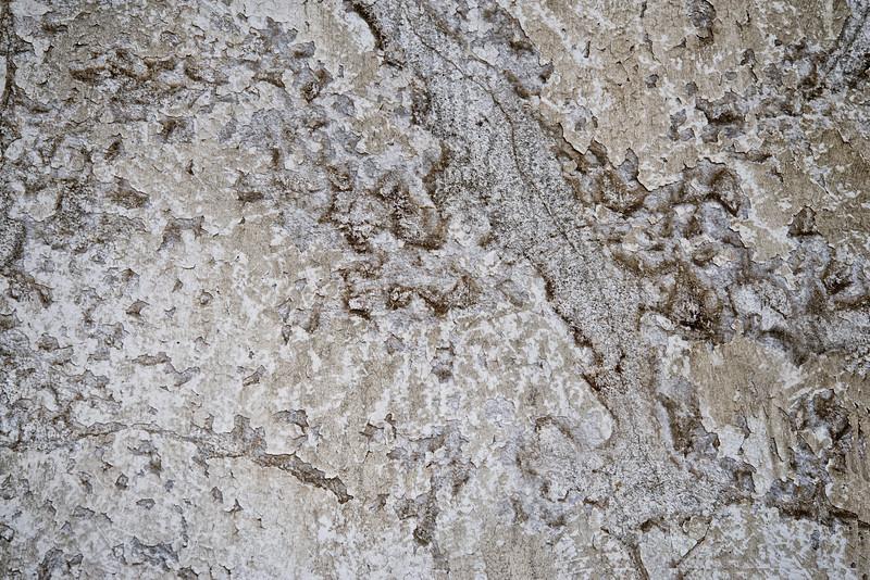 _DSC5237 Plaster Cracks
