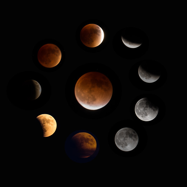 Photo #270 of 365 - Supermoon Lunar  Eclipse