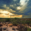 Photo #189 of 365 - Storm Chasing in Tucson!
