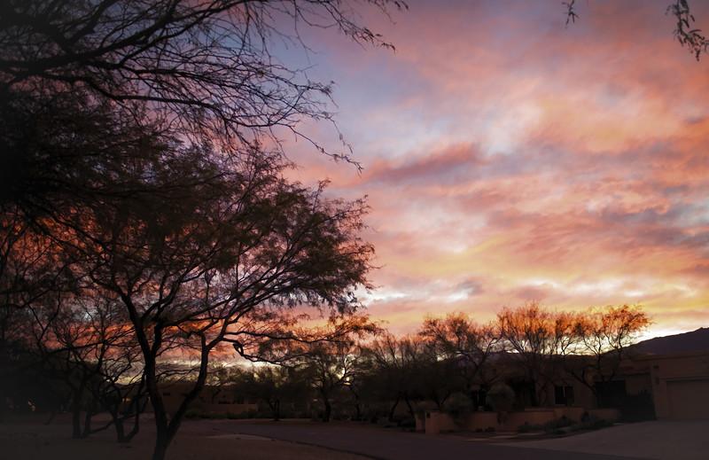 Photo #353 of 365 - Morning Sunrise!