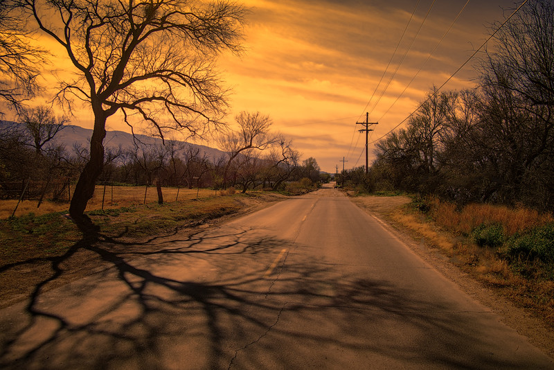 Photo #28 of 365 - Country Road, Take Me Home