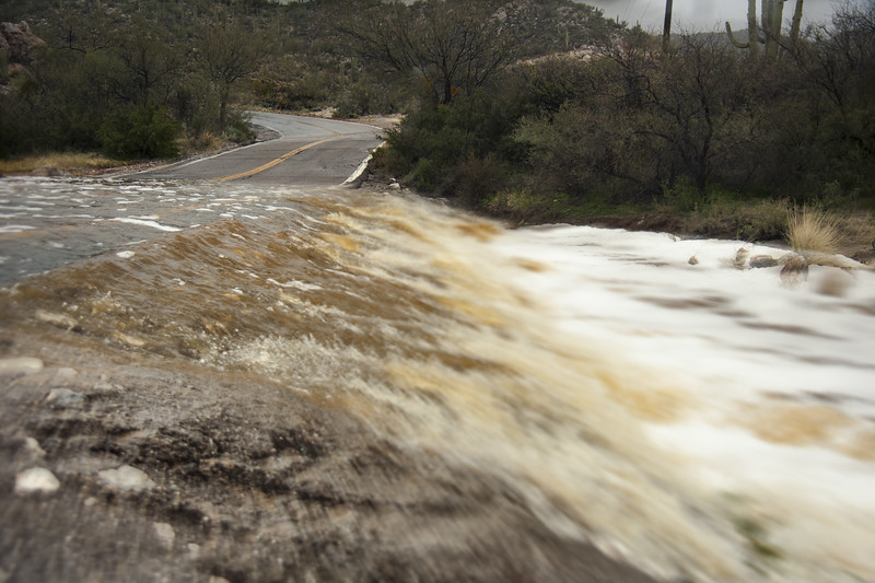 Photo #31 of 365 - Rainy Tucson