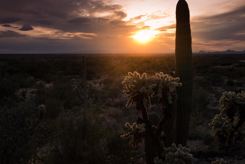 Photo #7 of 365 - Glowing Desert