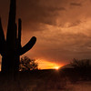Photo #180 of 365 - Monsoon Sunset