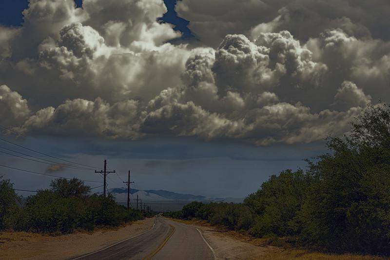 Photo #182 of 365 - Monsoon Madness