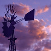 Photo #105 of 365  -  Windmill for Jessie
