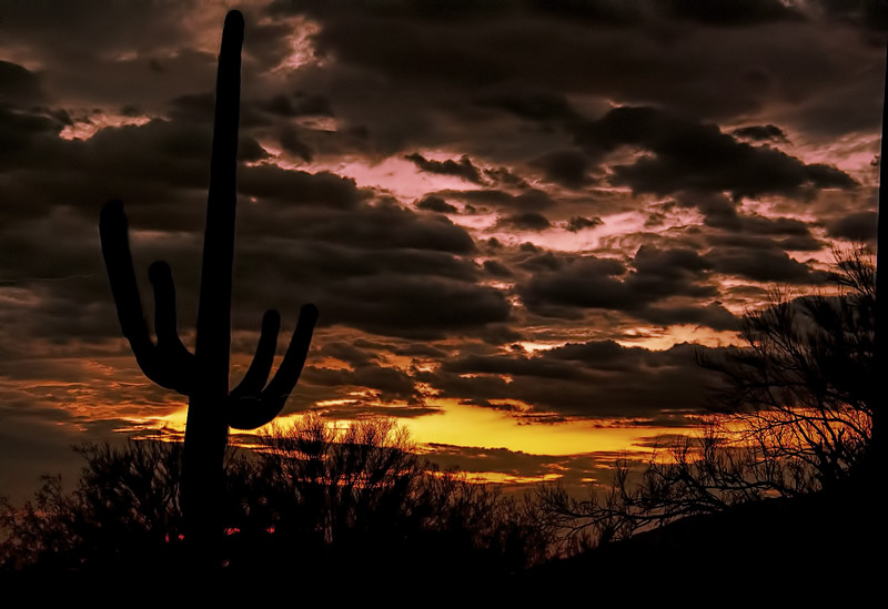 Photo #97 of 365 - Sunset in the Old Pueblo