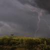 Photo #238 of 365 - Lightening strikes over Redington Pass