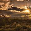 Photo #260 of 365 - Golden Hour over the Desert!