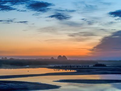 11.2.2016 Crex Meadow dawn