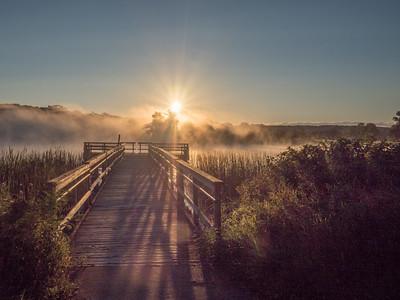 9.3.2016 Ottawa Lake mist