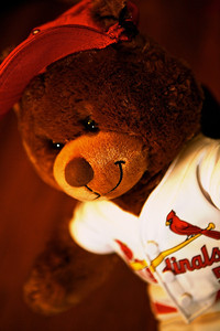 Cardinal Bear. This is a Cardinal Albert Pujols bear, which arrived shortly after he left the Cardinals. My 6 year old doesn't seem to mind that he's changed teams. Edit notes can be found on my blog at: http://www.douglassandquist.com/tech/cardinal-bear-picture-a-day-10  Day10/366  01-10-2012