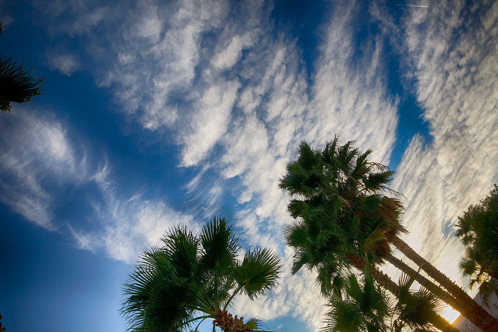oct12-clouds-palms