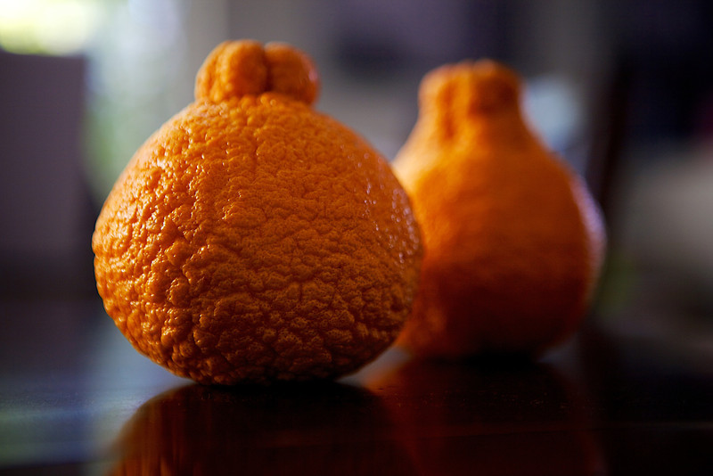 I have never seen Sumo Mandarins before, but I found some yesterday and thought they looked interesting. Who's had a Sumo Mandarin? I haven't tried them yet... <br /> <br /> Day 48 of 365<br /> 02-17-2013