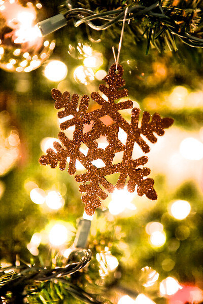 Liked this Snowflake ornament on the tree!
