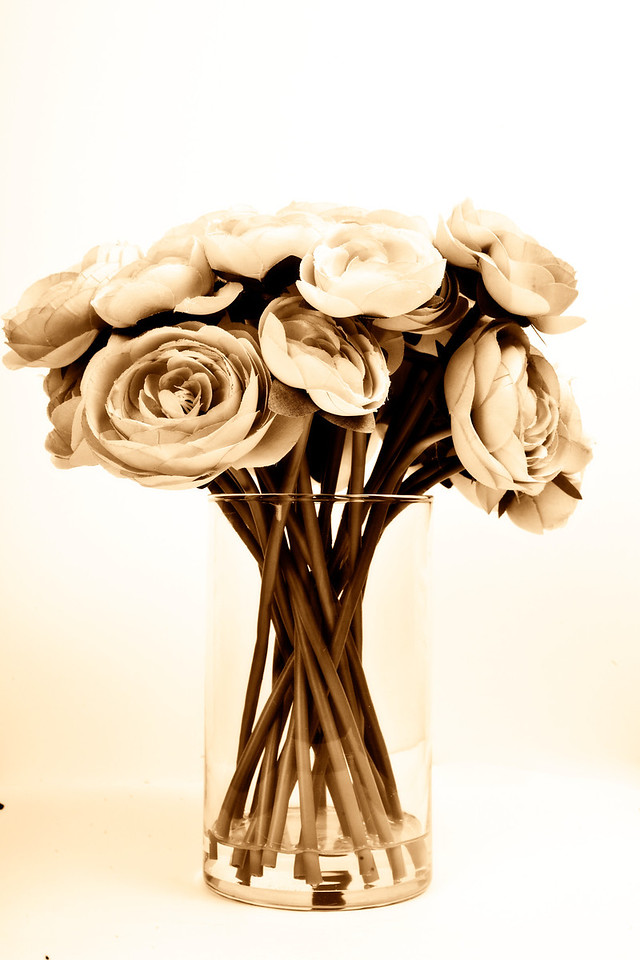 These are silk flowers that I decided to photograph today... <br /> <br /> Day 18/365<br /> 01-18-2013