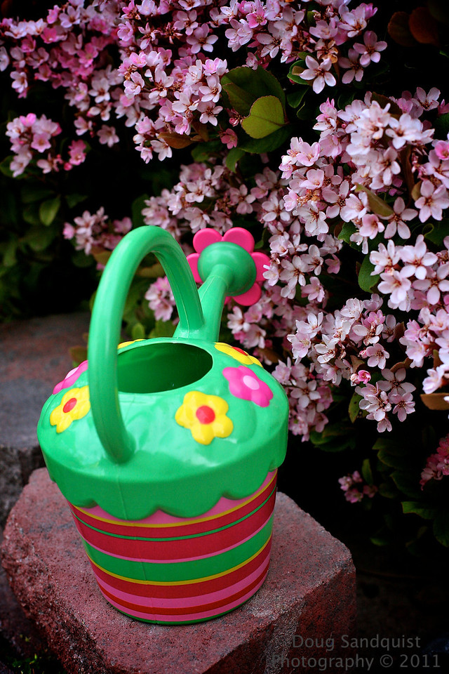 So how cool is this watering can! Its even cuter in the hands of a 2 year old watering the flowers... :)<br /> <br /> 04-19-2011
