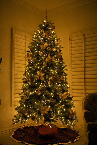 I was over at my Mom's tonight and hadn't had a chance to see her tree this year, and tonight I noticed it and decided to include as my picture today... It's a pretty tree for sure!... <br /> <br /> 12-26-2011...<br /> <br /> Ps hard to believe I only have 5 more photos to 365! Man this year has flown by!