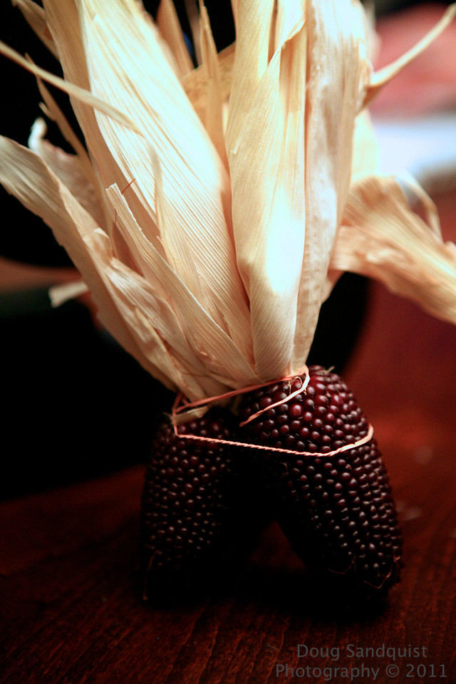 Red Corn for fall! <br /> <br /> 11-03-2011