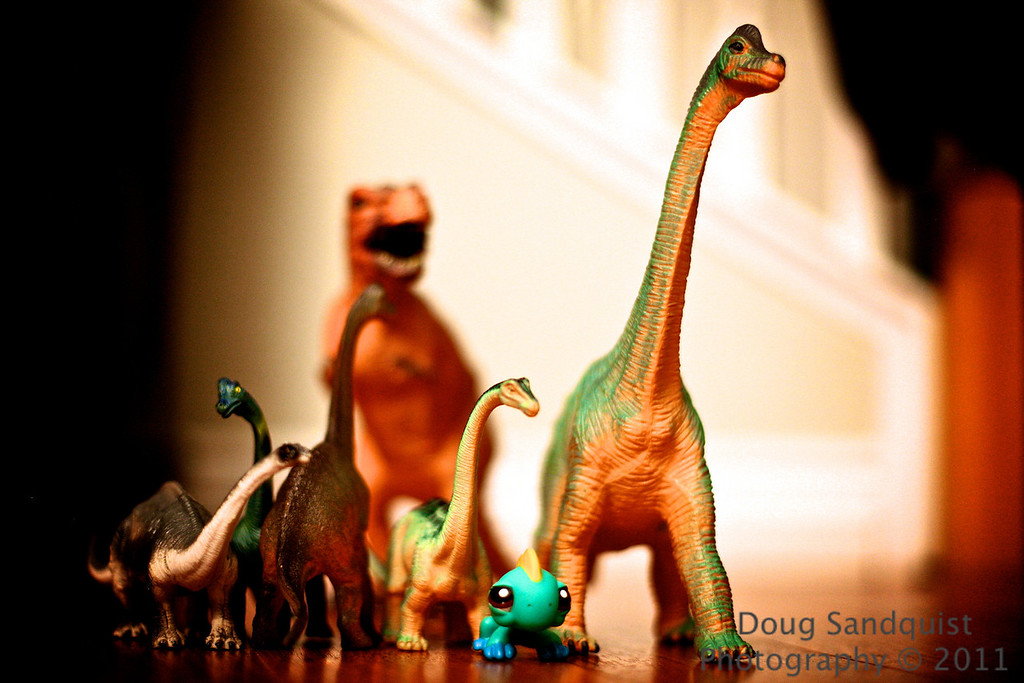 The set up for this shot is courtesy of Reece... The mighty T-Rex has found a herd of long necks.. and one of the long necks has spotted the T-Rex... and I'm not sure who the little alien looking dino belongs too! but he's cute! This could be a batte!<br /> <br /> 02-28-2011