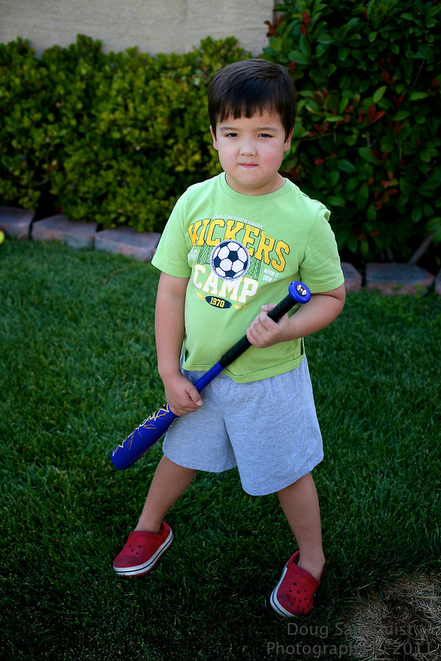 Reece got a new bat today! It's still a little big for him, but if he chokes up on it he can swing it... So set up a T for him to take some practice swings... I then realized that we'll have to head to the park before I let him use a real baseball, as I had whiffle balls whizzing by my head! Then I said I needed to find my photo for the day, and he offered to pose... So here he is with his new bat... This is a perfect spot as the evening sun bounces off the neighbors window and leaves a nice glow... <br /> <br /> 05-30-2011