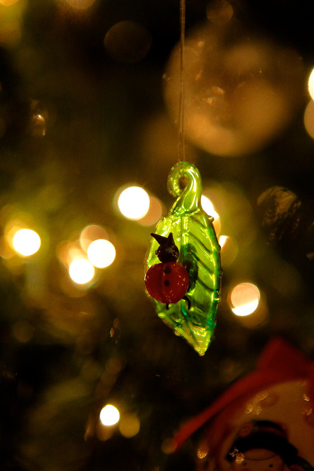 Fun Ladybug on a leaf Tree ornament.... I liked the Bokeh and glow of this image... <br /> <br /> 12-15-2011