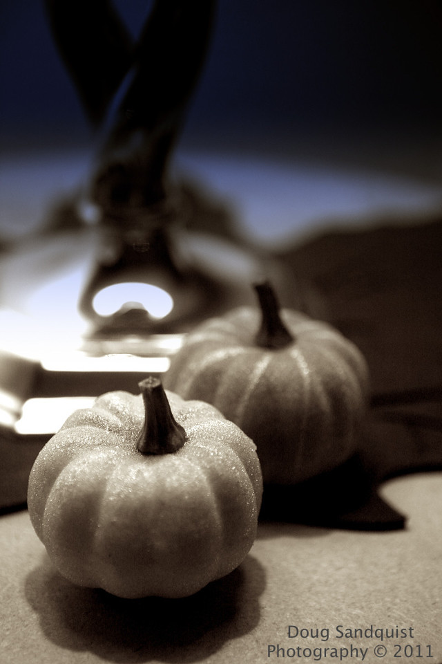 Keeping with the pumpkin theme this week... :)<br /> <br /> 10-25-2011