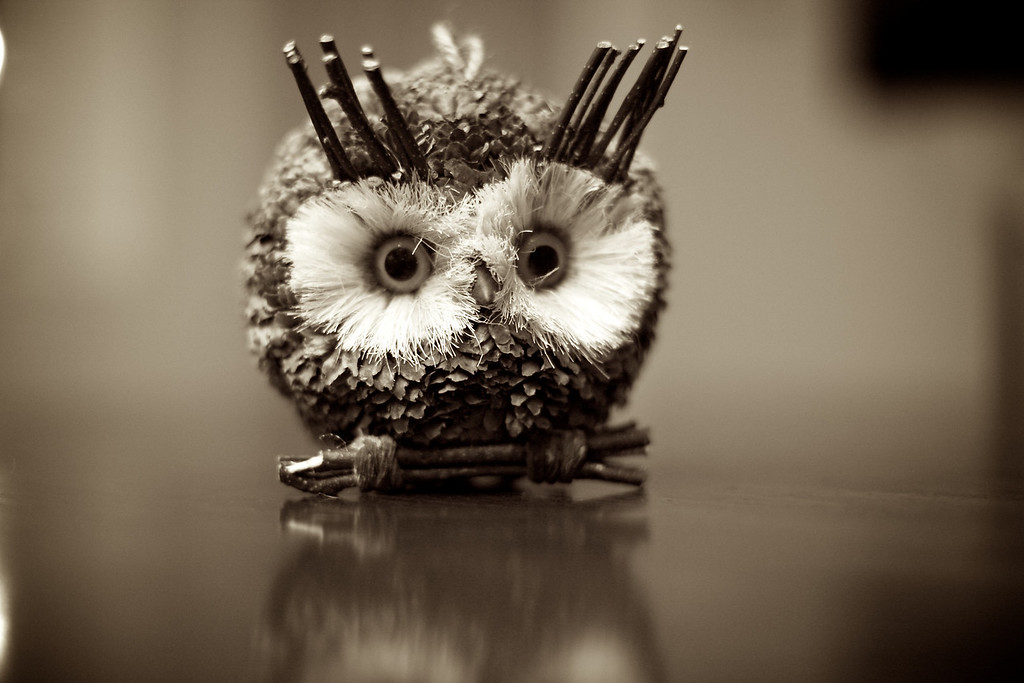 Found this Pinecone owl on the table tonight.. thought he was cute!<br /> <br /> 09-13-2011