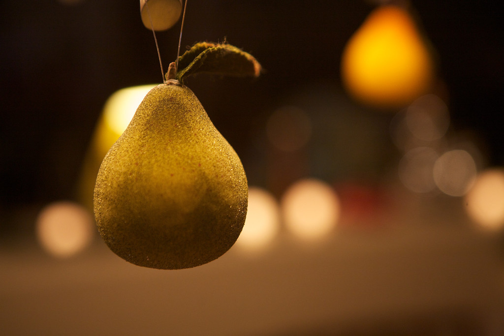 It's beginning to look like Christmas around our house... I thought these pear ornaments hanging from the chandelier looked... <br /> <br /> 11-29-2011