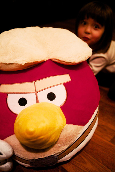 Hiding behind the Angry Bird