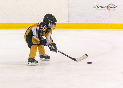 Day 60 - Hockey Star in the making.